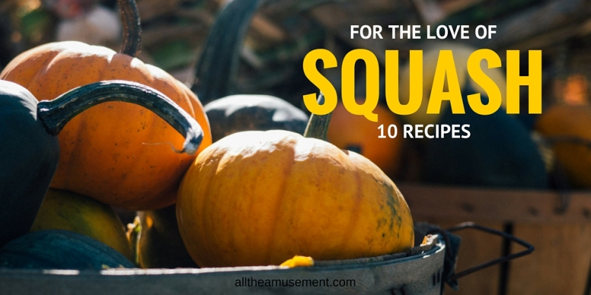 for-the-love-of-squash | alltheamusement.com